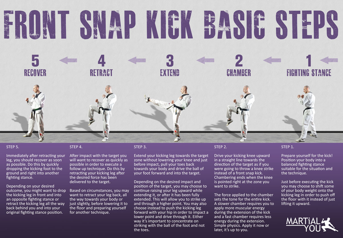 Front Snap Kick Guide Poster 1200x833