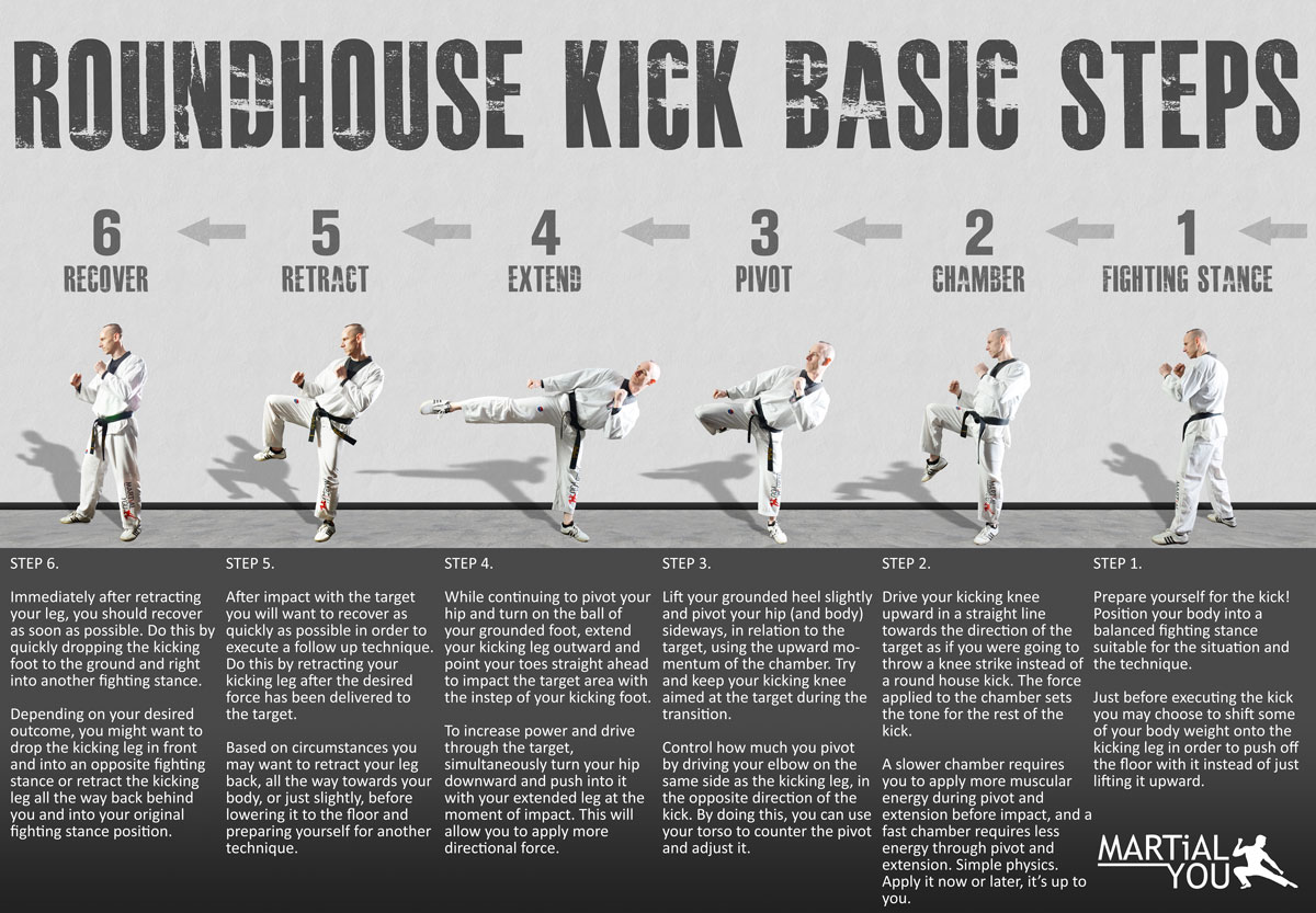 Roundhouse Kick Guide 1200x833