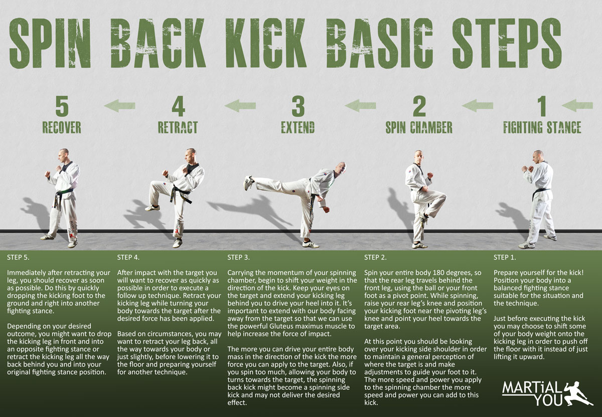 Spin Back Kick Guide Poster 1200x833